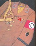 Партийный значок NSDAP Золотой.