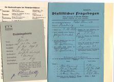 Документ на DRL в бронзе