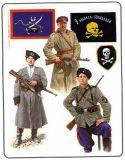 Рейх Звезда За Храбрость для восточных народов в Серебре