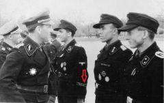 Манжета 5-я танковая дивизия СС